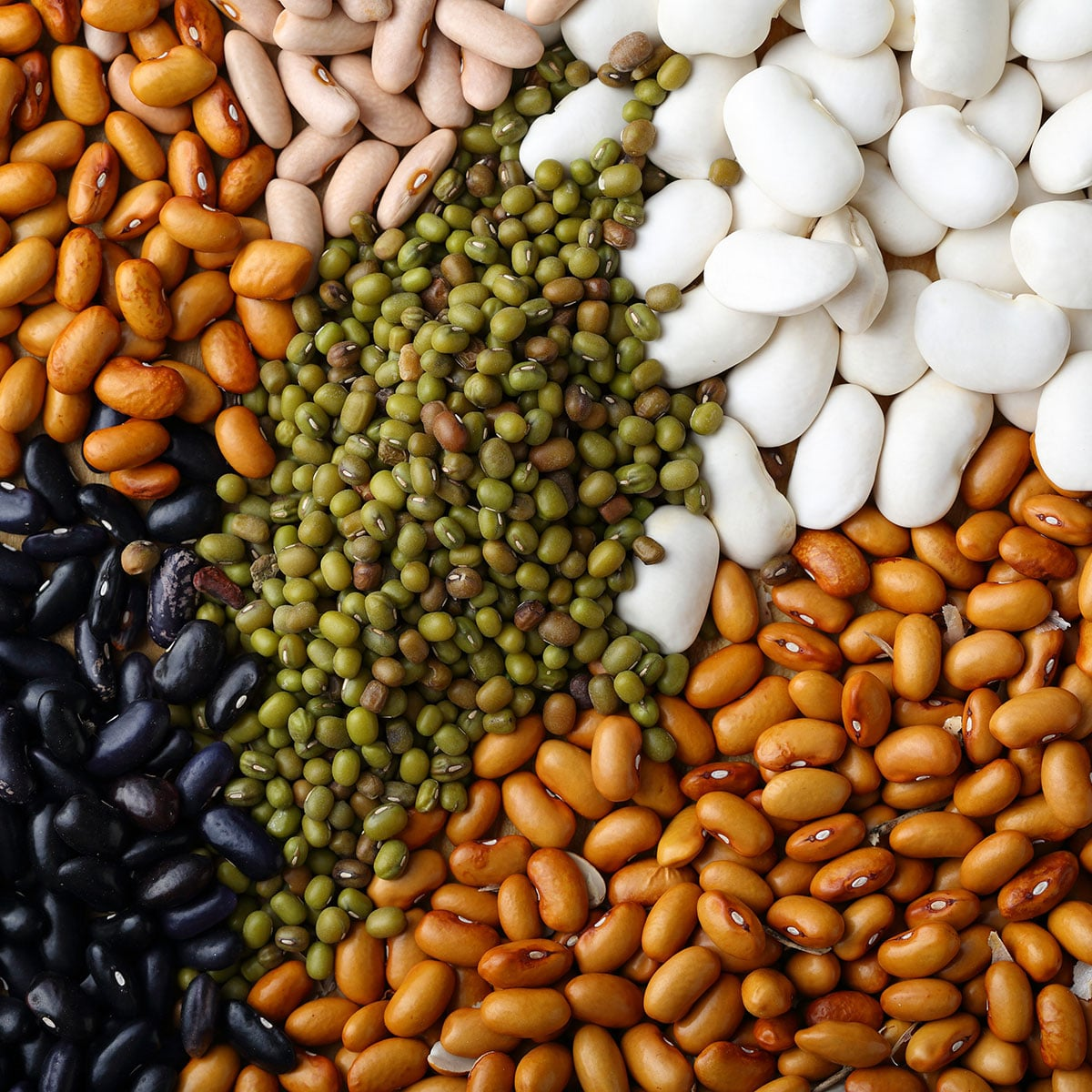 National Food Day Calendar 2022.National Bean Day January 6 2022 National Today